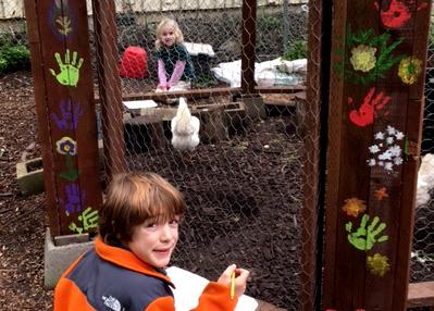 chickens_addie_ryder_coop_630x451