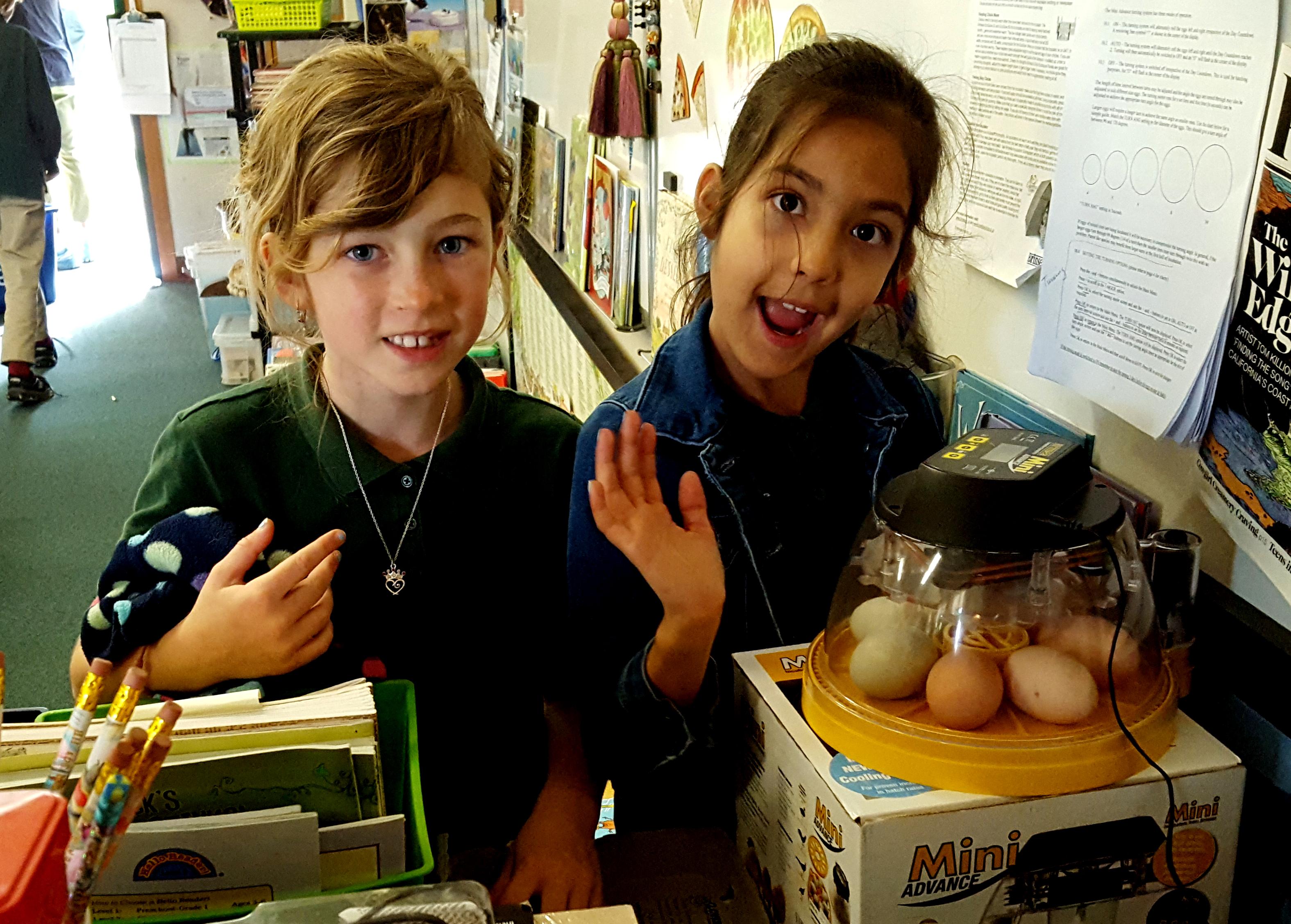 eggs_incubator_class_evie_raschell_630x451