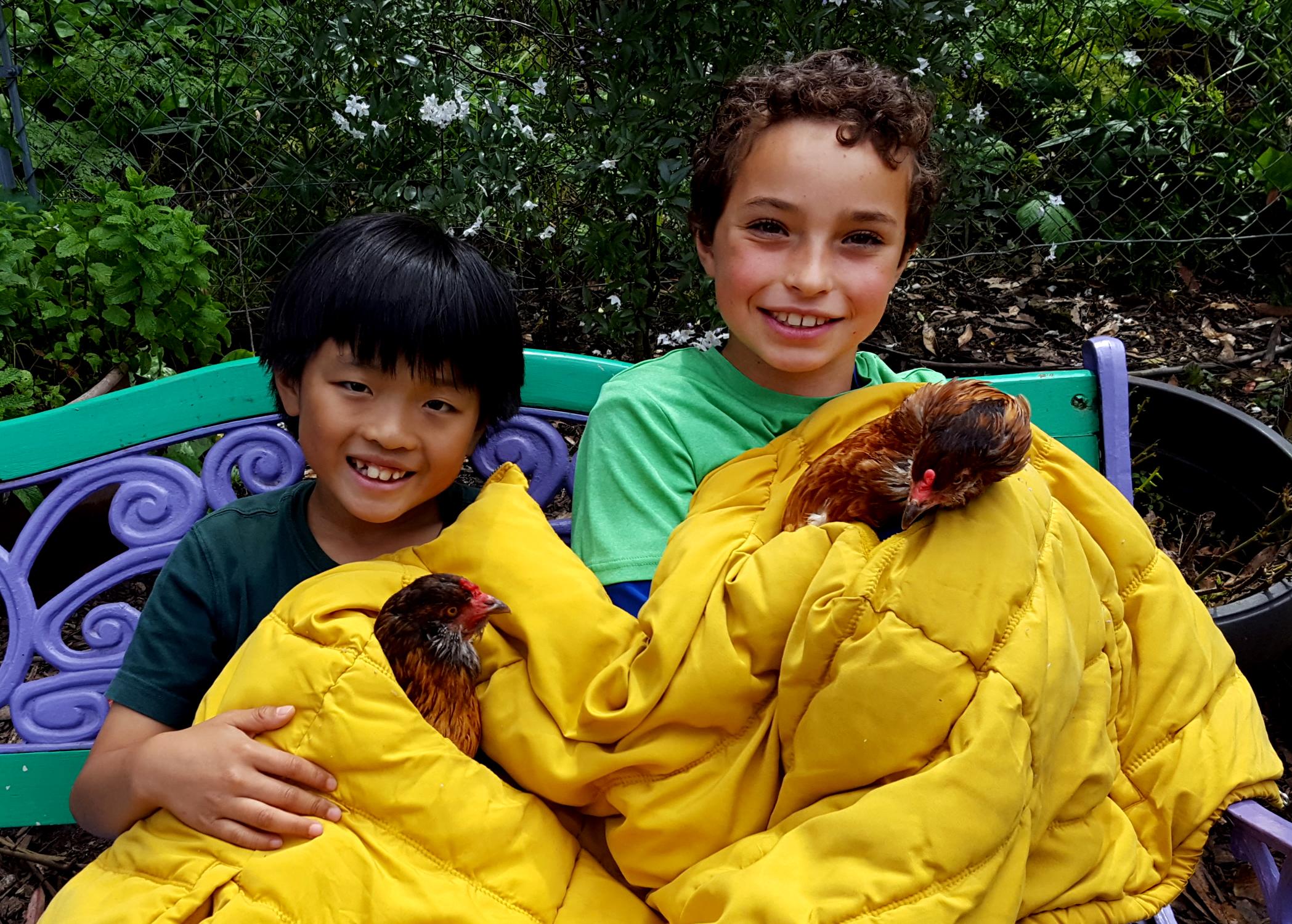 chickens_rocket_rosie_jamen_dante_630x451