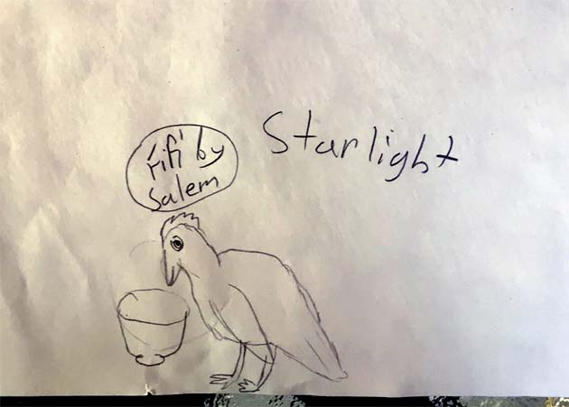 csh_drawing_starlight_fifi_630x451_050418